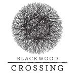 BLACKWOOD CROSSING, bande annonce Gamescom 2016 [Actus Jeux Vidéo]