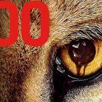 ZOO, la saison un en DVD [Actus Blu-Ray et DVD]