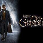 LES ANIMAUX FANTASTIQUES : LES CRIMES DE GRINDELWALD, première bande annonce [Actus Ciné]