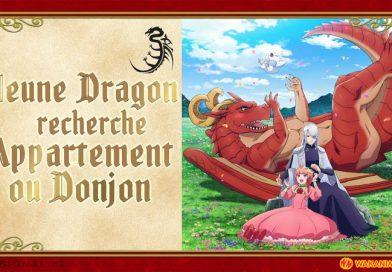 Jeune Dragon Recherche Appartement Ou Donjon